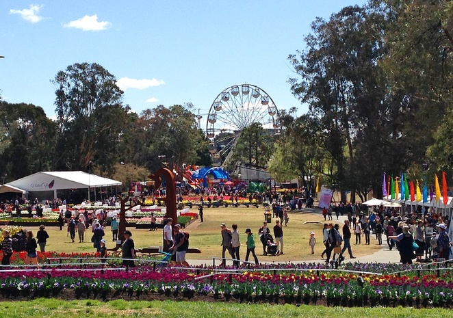 floriade, canberra, 2017, ACT, spring, flowers, things to do, spring events