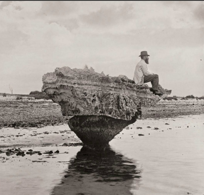 Image: H H Tilbrook, 1848-1937, Corset Rock, 1898, gelatin-silver photograph, R. J. Noye Collection, Gift of Douglas and Barbara Mullins 2004, Art Gallery of South Australia