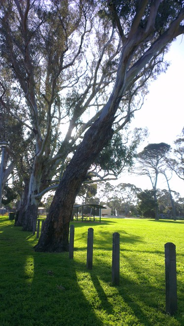 market square, park, old noarlunga, playground, gum trees