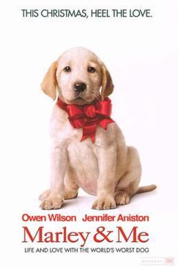 Marley and Me, Owen Wilson, movies about dogs, movies for dog lovers