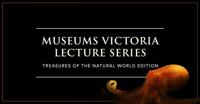 mv lectures present, treasures of deep sea science, community event, fun things to do, education, museums victoria lecture series, treasures of the natuiral world edition, museum victoria's online event, csiros marine national facility research vessel investigator, indian ocean, christmas island, seafloor, marine life, high pressure ecosystem, research vessel, treasures of the sea, interactive lecture online webinar
