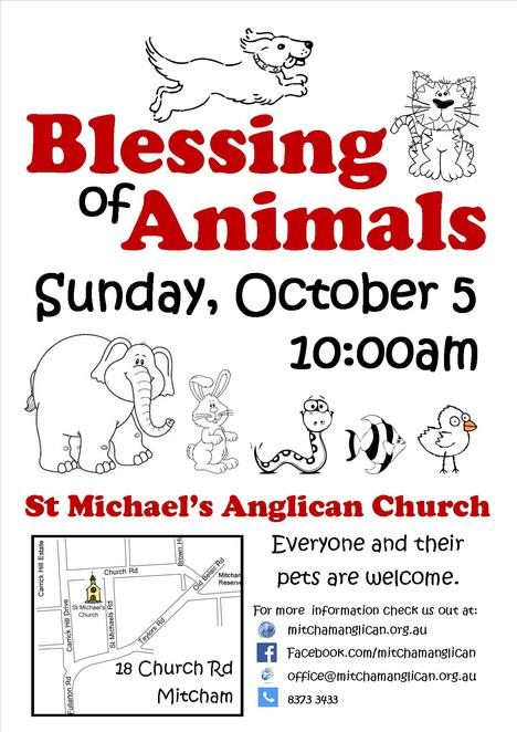 world animal day, pet blessing, rabbits, horses, mitcham, dogs, cats, church
