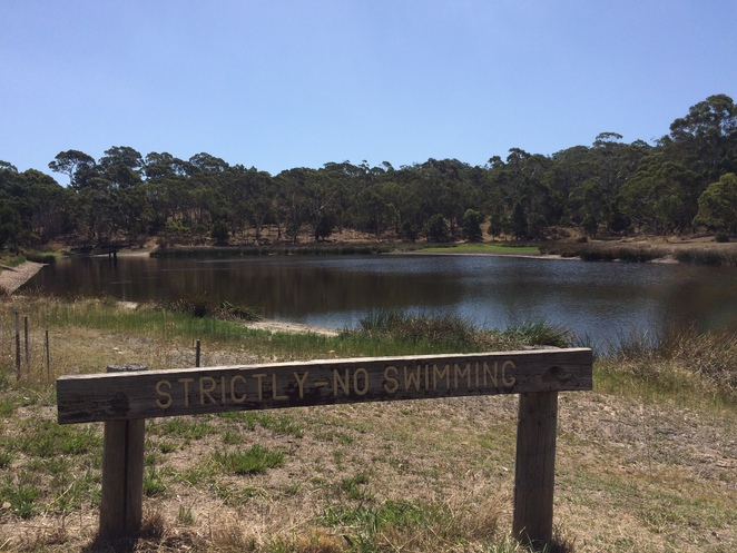 Billabong at Bushland Park