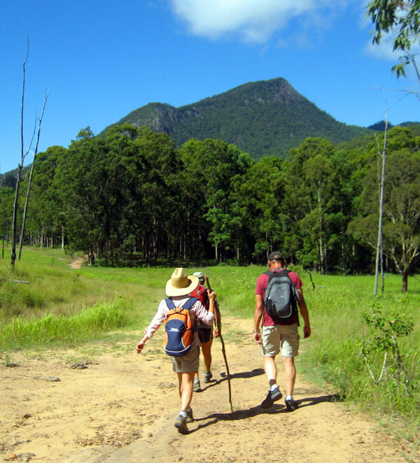 The Cronan Creek Track visits the lower slopes of Mt Barney