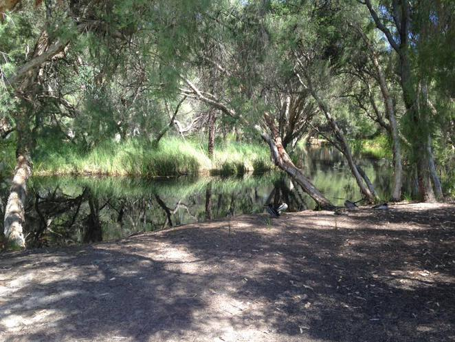 gACO, great aussie camp out, camping, australia