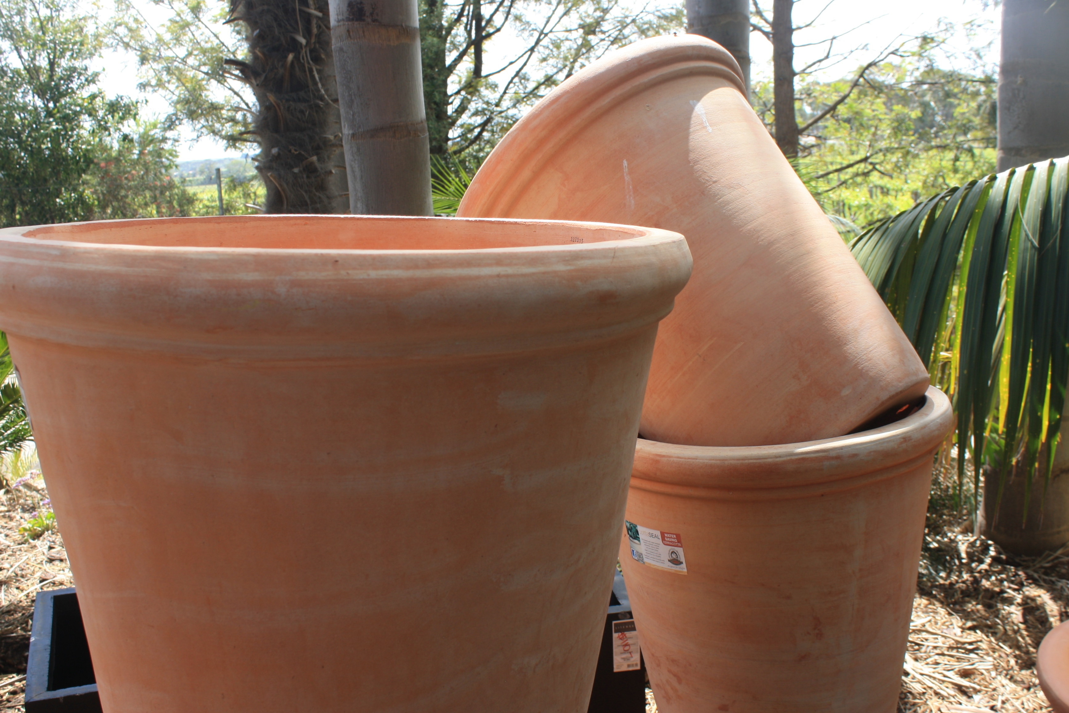 The nursery stocks a huge range of garden pots. The Jungle in Willunga   The Fern Forest Nursery   Adelaide