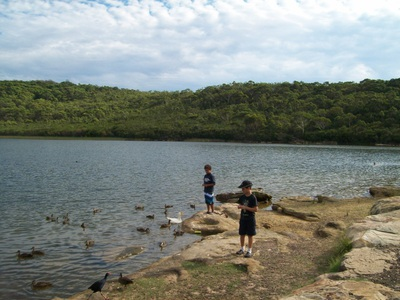 Manly Warringah War Memorial Park - Manly Dam