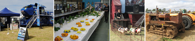 This image is from the Murray Bridge Show website.