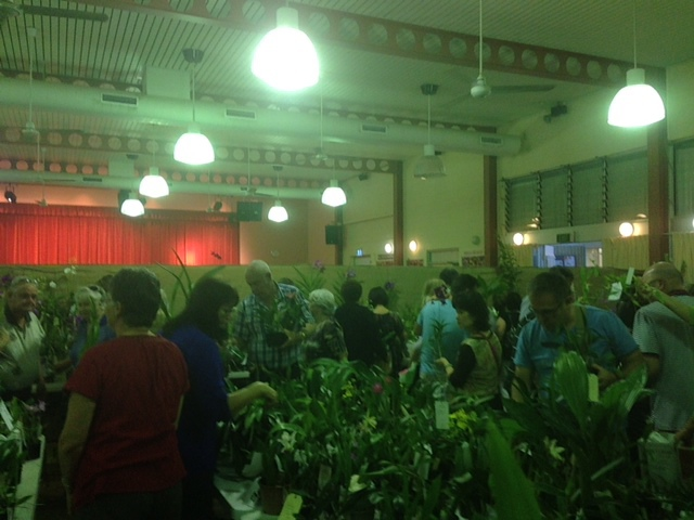Orchid society's plant sales...