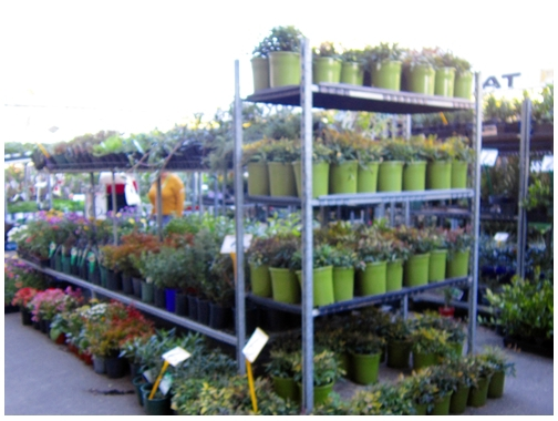 Parklea markets, Sydney Markets, fresh food, souvenirs, Parklea pots and plants, Blacktown,Gardens