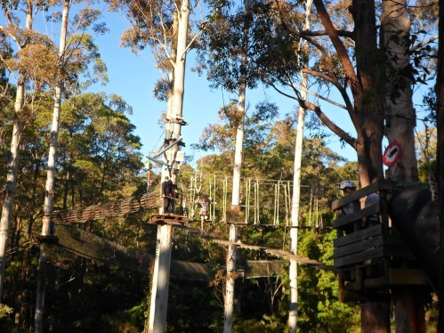 Thunderbird Park Tree Top Challenge High Ropes Course