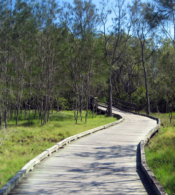 Boardwalk at Boondall Wetlands