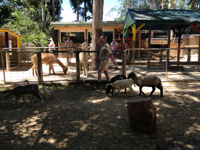 Animals & Wildlife, Nature, Macadamia, Family, Tourist Attractions