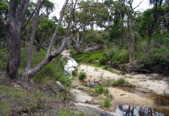 The river at Morgans Gully Picnic Area