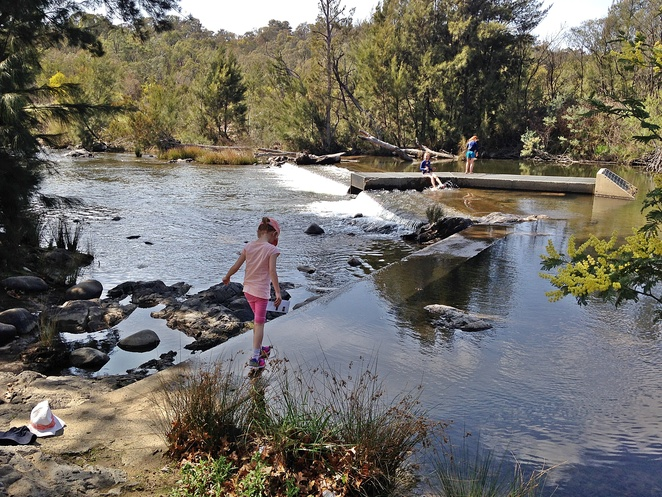 cotter campground, canberra, cotter avenue, cotter reserve, ACT, murrumbidgee river, camping, river swimming, payment,