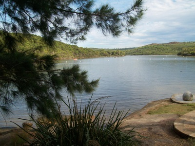 Free things to do in Sydney this weekend - Manly Warringah Memorial Park - Manly Dam