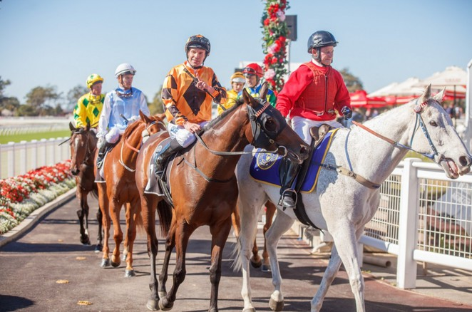 Horseracing, Horses, Day Out, Fashion, Dining, Entertainment, Brisbane, Ascot