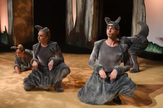 Monkey Baa Theatre Company, Josephine Wants To Dance, Jackie French, Bruce Whatley, children's theatre, theatre review, Australian theatre, world premiere, Jonathan Biggins, Sandra Eldridge, Eva Di Cesare, Tim McGarry, Diary of a Wombat, book to theatre adaptation, kangaroo