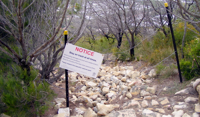 Despite the signs, there are plenty of paths up Mt Coolum
