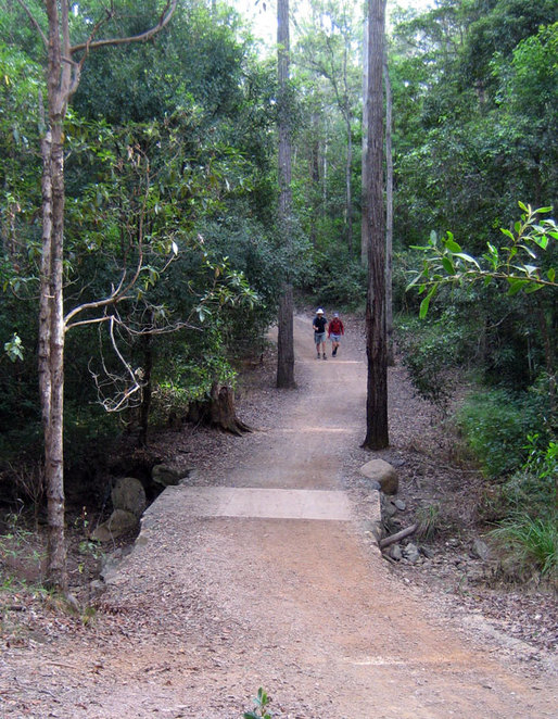 Walkers at Mt Coot-tha