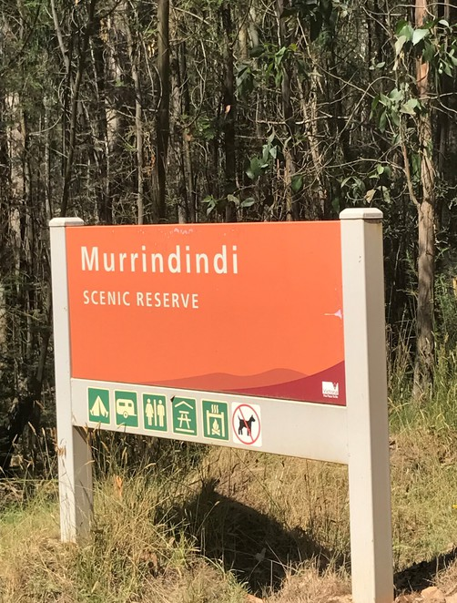 murrindindi scenic reserve day trip family fun camp adventure