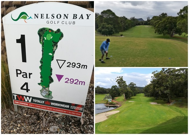 nelson bay golf club, nelson bay, golf course, bistro, bluewater grill, lunch, golf courses, port stephens, kangaroos, best golf courses in port stephens, golf courses in nelson bay, NSW, sydney, mid north coast, golf, kids, best clubhouse,
