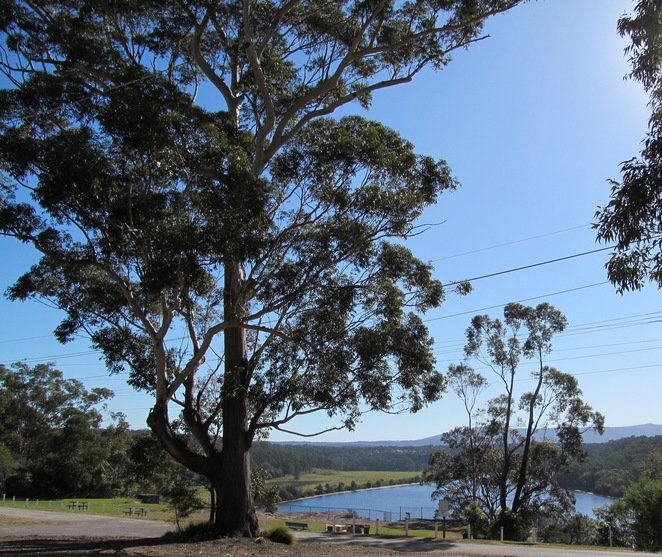 Nowra Historical Attractions