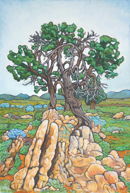Pirie Martin, Castle rock, Flinders ranges