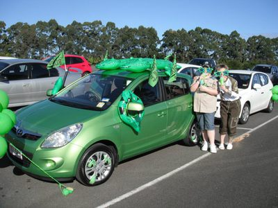 Plenty of cars dressed up for last year's event/Image from wildlifeemergency.com.au