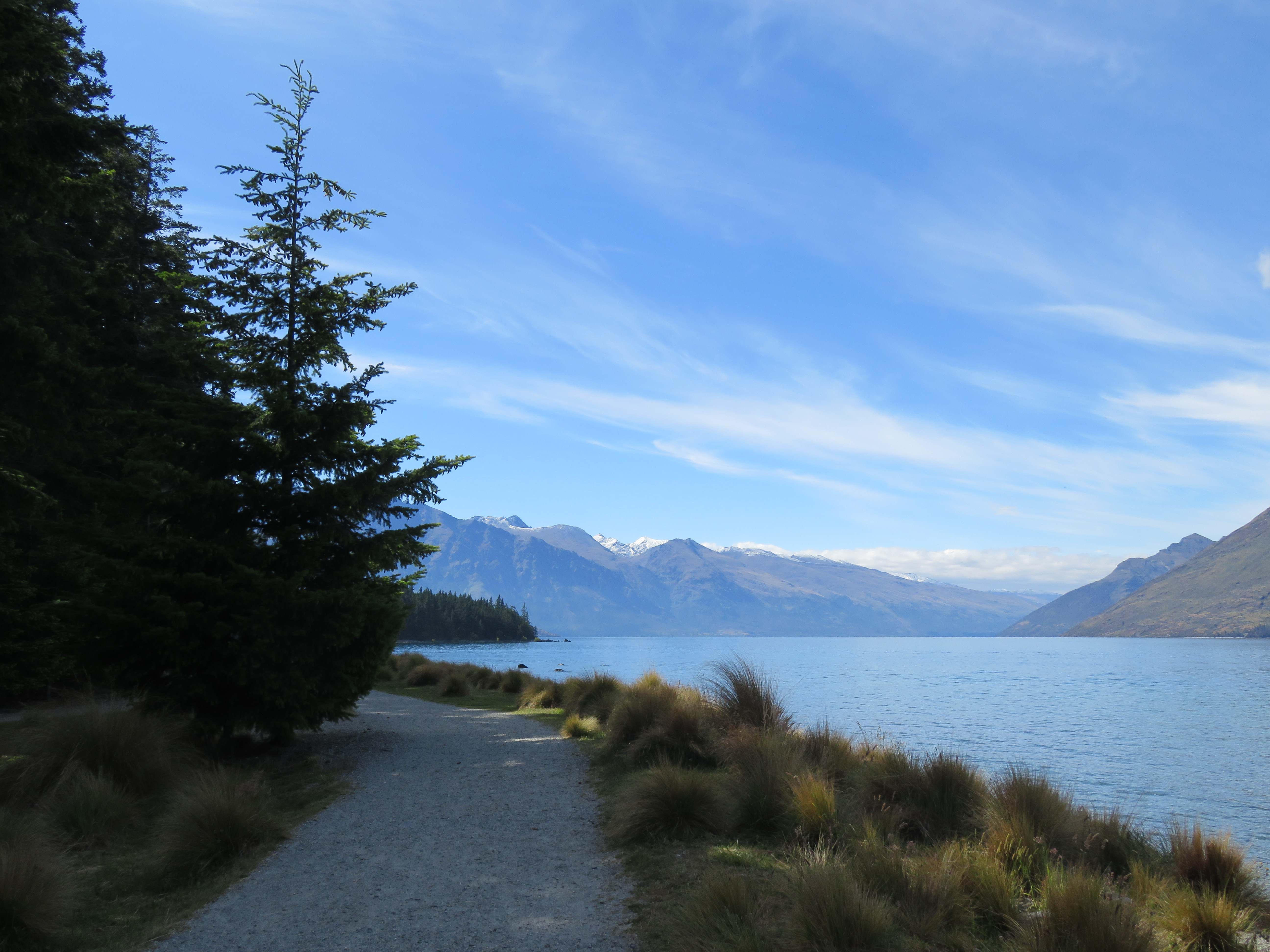 Writer for hire queenstown