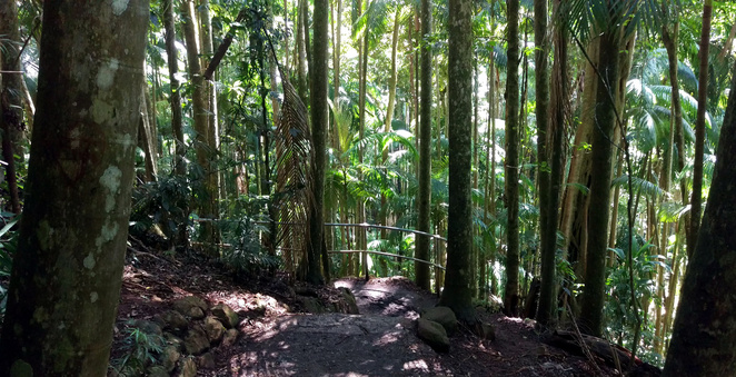 Beaches, islands, rainforest and waterfalls are all features of a great romantic walk