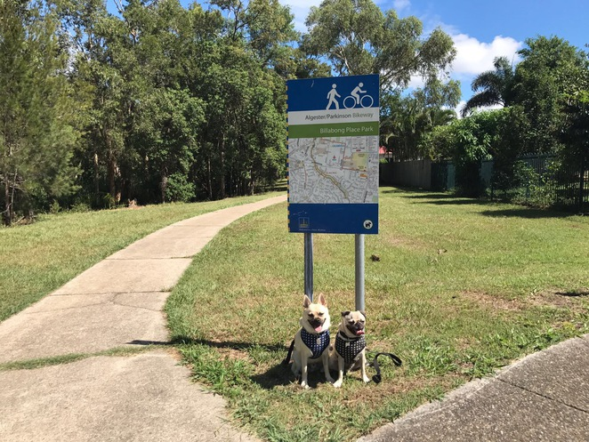 sheep station gully, walk, dog walk, park, creek, brisbane, algester, southside, southern suburbs, brisbane, free, outdoors, picnic spot, park, playground, dog friendly