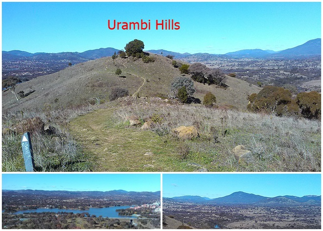 urambi hills, canberra, bushwalks, canberra nature park, ACT, bushwalks, views, lookouts