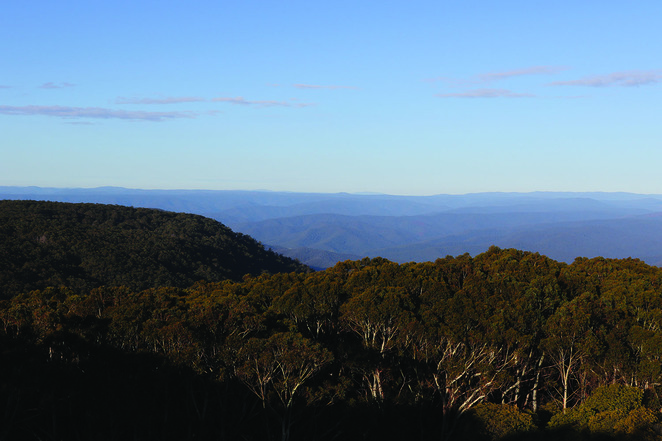 Mt Donna Buang Yarra Valley View