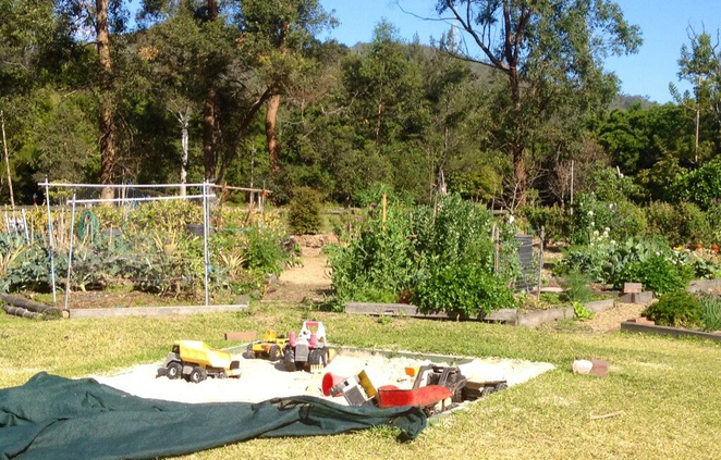 Yoorala Street Community Garden, The Gap, fruit, veg, flowers, herbs, community, plots, communal vegie area, gardening, organic, produce
