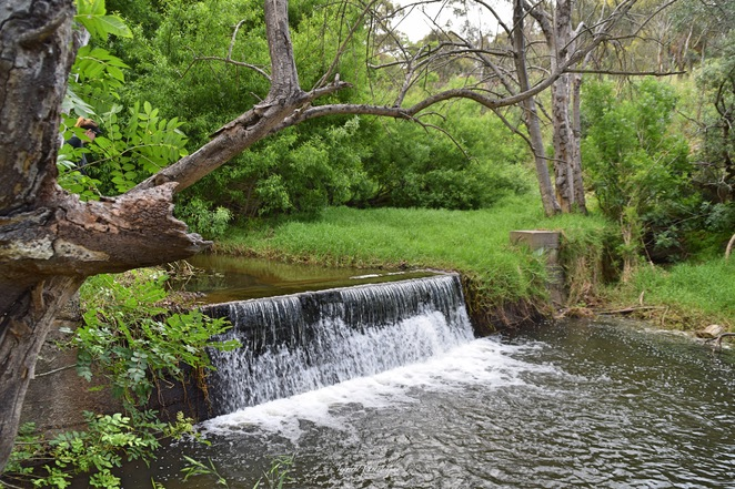 Brownhill Creek, Brownhill Creek Recreation Park, National Parks SA, Things to do in Adelaide, National Pleasure Resort, Brownhill Creek Caravan Park
