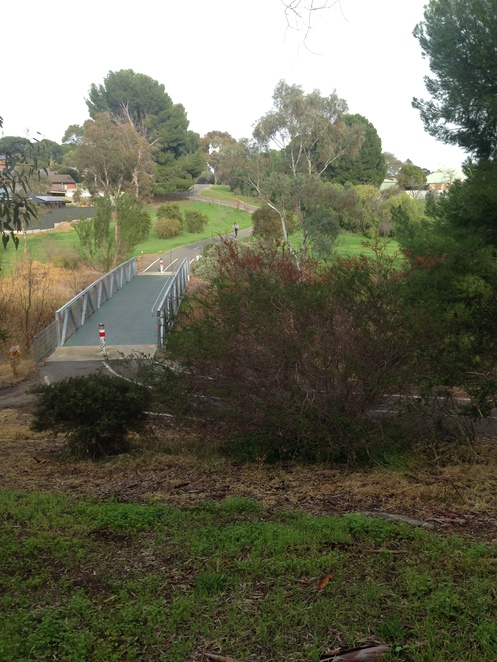 Coast to Vines Rail Trail, hikes in Adelaide, best bike paths in Adelaide, nature in Adelaide