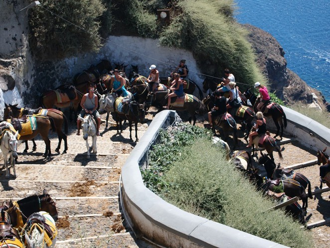 Donkey ride Santorini from Port