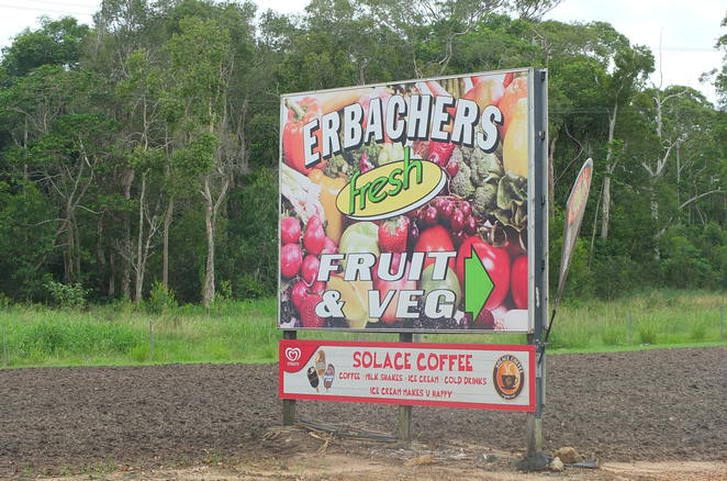 Erbachers Fruit and Vegetables, Diddillabah, Sunshine Coast, freshest, best quality fruit and vegetables, supporting local growers, dairy and poultry, bakery, meats, coconut waters and oil, cooking, jar products, Beerenberg condiments, quinoa, health products, weekly specials, JD's Quality Seafoods, Solace Coffee Van, dog-friendly coffee outlet