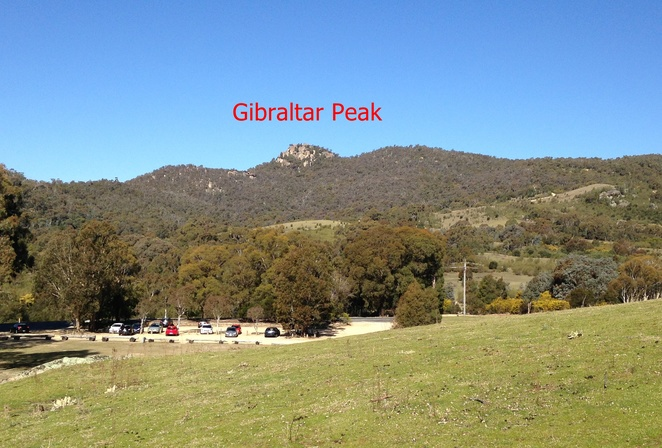 gibraltar peak, canberra, tidbinbilla nature reserve, canberra, ACT, walks, bushwalks, outdoors, fitness, exercise, animals, native, indigenous, history, national parks, long walks, walks, bushwalking in canberra, ACT,