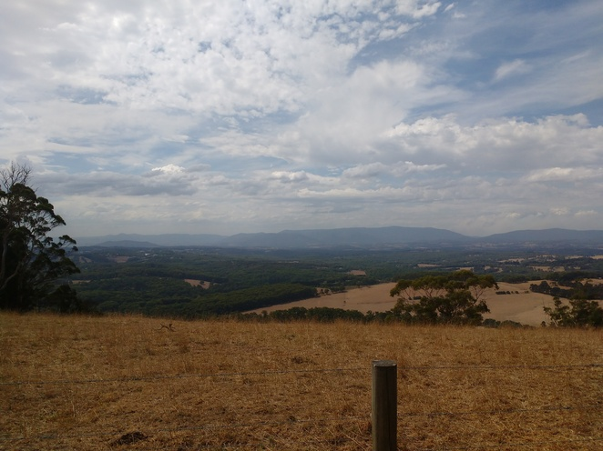 Johns Hill, Lookout, Kallista