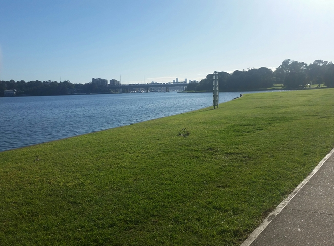 Leichhardt park, the bay run, inner west, parks, free, views