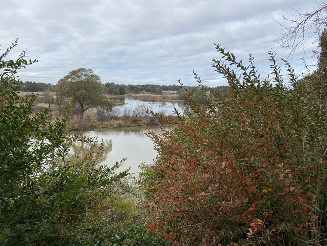 Magnificent views in Cecil Hoskins Nature Reserve