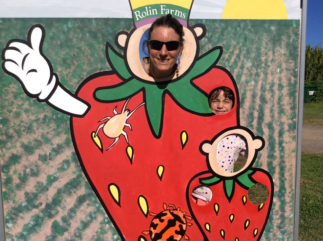 Pick Your Own Strawberries at Rolin Strawberry Farm, Elimbah