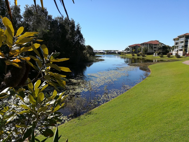 sebel, the grill, pelican waters, water views, lunch, dinner, buffet breakfast, water, golf course, sunshine coast, queensland, special events, romantic, couples, QLD,