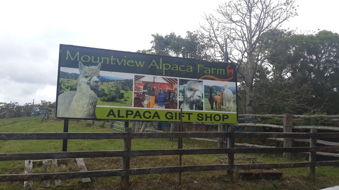 Mountainview Alpaca farm sign