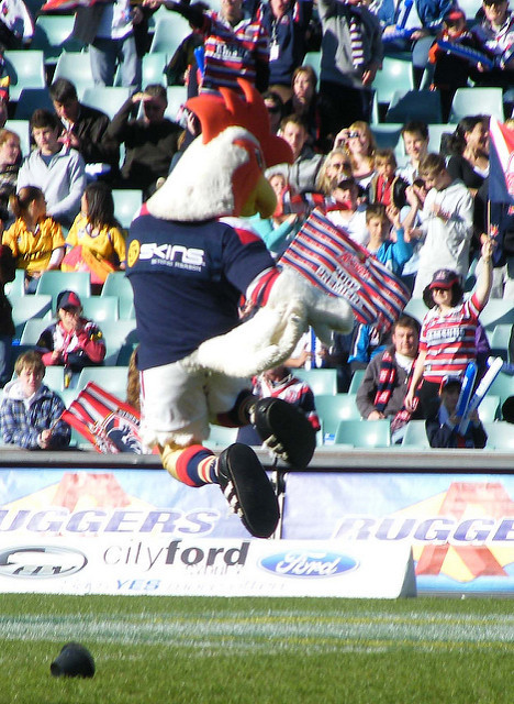sydney roosters fans
