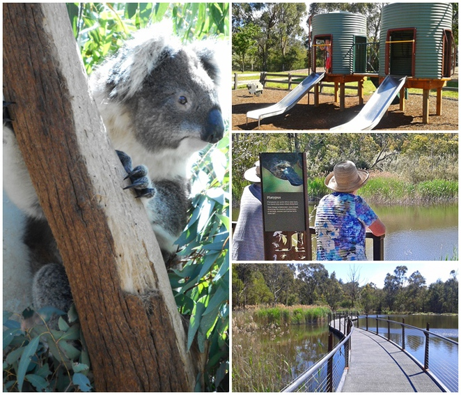 tidbinbilla, canberra, things to do with kids, families, family activities, school holidays, less that $10,