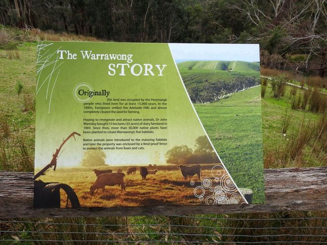 Warrawong Grand Reopening, warrawong, open day, Warrawong Wildlife Sanctuary, sanctuary