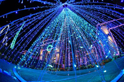 Image Courtesy of the World's Best Christmas Lights facebook page
